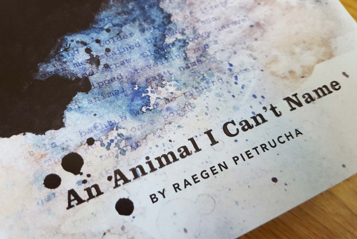 An Animal I Can't Name book cover art